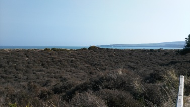 Studland Bay, Swanage