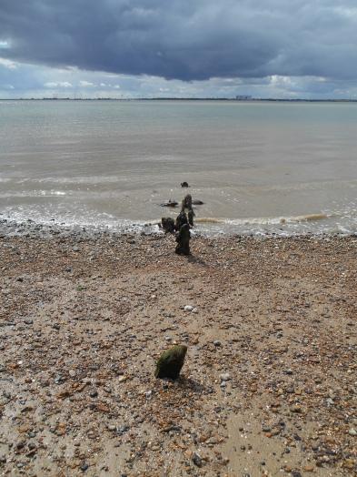 Remains of groynes
